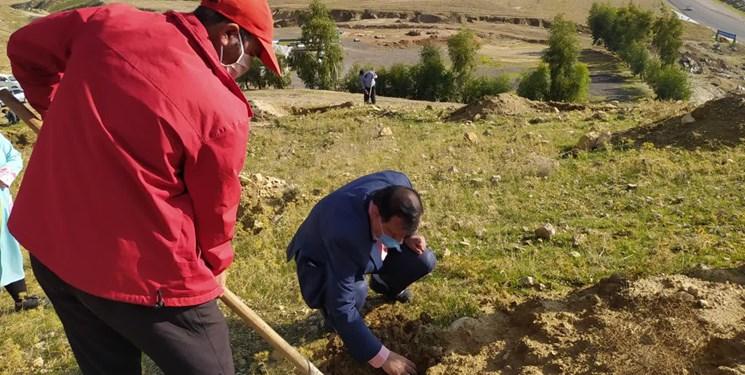 اهدا نهال به شهروندان قمی همزمان با روز درختکاری